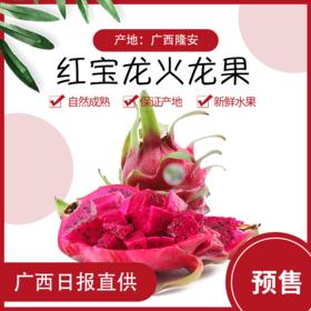 【新品预售】7月8日左右发货 广西红宝龙红心火龙果12枚装10斤左右(西宁市区包邮)支持到店自提