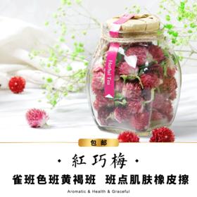 【包邮】红巧梅-大瓶装-无香-花