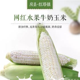 【全国包邮】水果玉米5根装