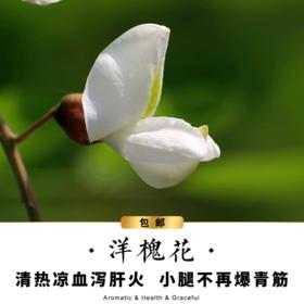【包邮】洋槐花-大瓶装-低香-花