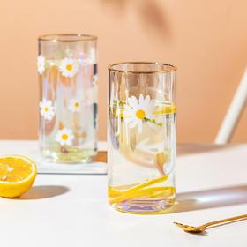摩登主妇夏日小清新ins风小雏菊家用透明喝水杯子饮料果汁牛奶杯