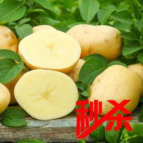 秒杀【时令蔬菜】土豆500g±20g