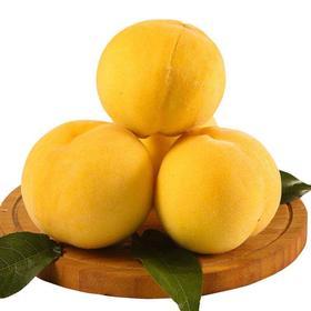 【山东】蒙阴锦香黄桃 果肉鲜嫩 果汁丰盈 4.5-5斤
