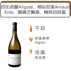 2017年天地人阿里高特白葡萄酒 Lou Dumont Bourgogne Aligoté 2017