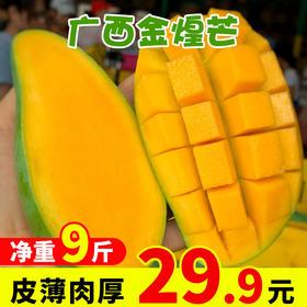 广西芒果金煌芒甜心芒新鲜水果9斤整箱包邮