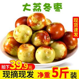陕西大荔冬枣新鲜水果5斤当季整箱应季枣子大枣甜脆鲜枣东枣包邮