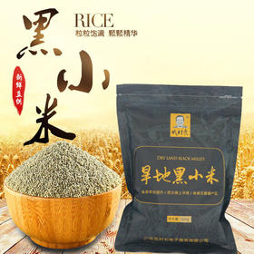 山西静乐黑小米 营养健康 粒粒饱满 清香可口 富含丰富膳食纤维