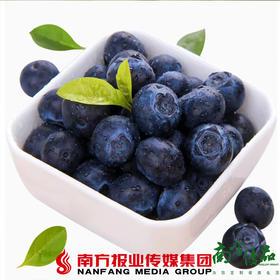 【珠三角包邮】云南蓝莓 125g±20g/盒 12盒/ 箱 (7月6日到货)