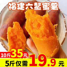 现货5斤装9斤装福建六鳌红薯 新鲜现挖香甜沙地蜜番薯