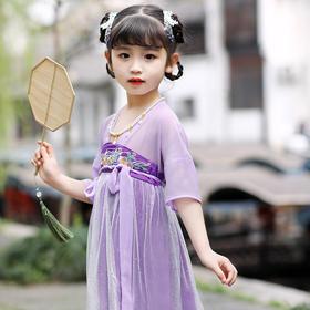 LLFS-L503新款中国风优雅气质汉服连衣裙TZF