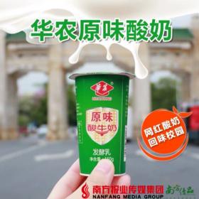 【珠三角包邮】华农原味酸牛奶 150g /杯  10杯/份(7月10日到货)