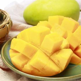 【农道好物精选】芒果中的Plus攀枝花凯特芒  个大软糯  香味浓郁多汁  皮薄核小