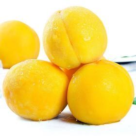 【山东】黄金蜜桃 脆吃爽口细腻 软吃甜而不腻