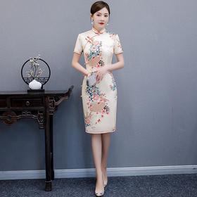 MQ-QP1480夏季中国风复古旗袍TZF