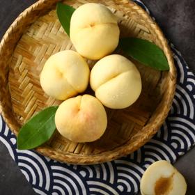 【应季上新】山东白桃 肉质脆嫩 香甜美味 桃香满口 健康种植 新鲜美味 果园现摘现发