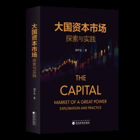 大国资本市场探索与实践
