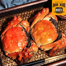 【阳澄湖六月黄】个大体肥 壳薄肉嫩 营养美味 令人垂涎 每一只蟹都是精挑细选送到您手中