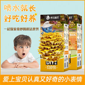 考拉精灵diy蘑菇盒秀珍菇/桃红平菇