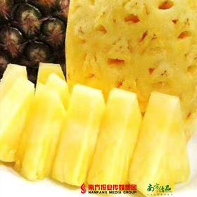 【珠三角包邮】广西新鲜凤梨 2-3斤/ 个  2个/份(次日到货)