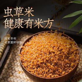 【第2件半价】养生虫草米 300g* 6罐/箱