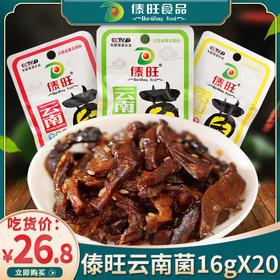 云南特产傣旺油鸡枞菌16g*20袋 香辣烧烤泡椒菌类零食 即食鸡纵菌