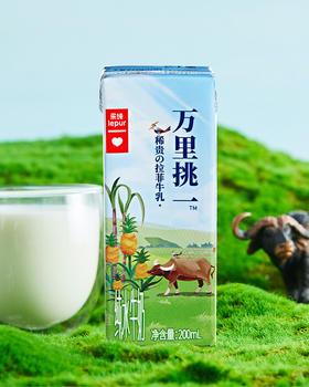 【万里挑一的稀有拉菲牛乳 每一口都像喝冰淇淋】乐纯万里挑一水牛奶整箱200ml*12