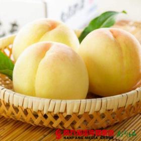 【全国包邮】蒙阴白玉蜜桃  5斤±2两(9-12个)/箱 (48小时之内发货)