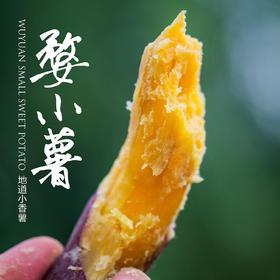 【好吃不胖】当季尝新香甜软糯小香薯,露天自然生长,产地现挖现发,产自天然氧吧婺源!