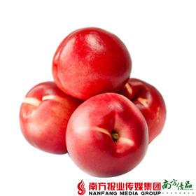【珠三角包邮】陕西 黄金红太阳 3斤±1两/箱 (7月25日到货)