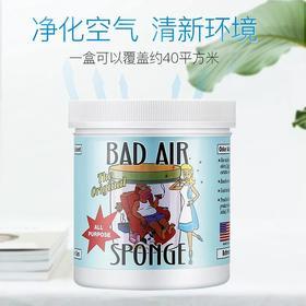 美国进口bad air sponge 家用甲醛祛除车内异味去除空气净化剂400g/1罐