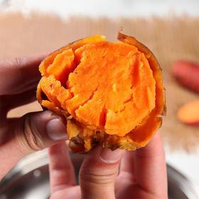 [精品六鳌红蜜薯 适合蒸食 ]粉糯无丝 香甜可口 中/小果5斤装
