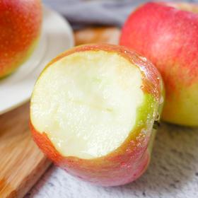 嘎啦苹果 皮薄多汁 现摘现发 清甜爽口 原生态种植 5斤/9斤装 | 基础商品