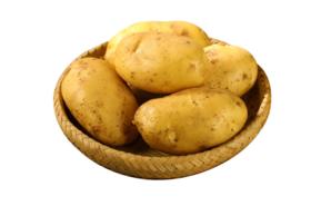 【时令蔬菜】土豆500g±20g | 基础商品