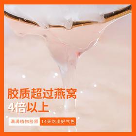 [枫颐]圣耳•植物燕窝 免洗泡 15分钟快速出胶 软糯嫩滑 胶质是燕窝的4倍 【3g/罐,买就送19.9元老冰糖】