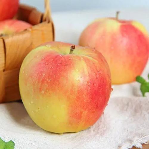 【战役助农】2020年新上市红苹果 陕西嘎啦苹果   新鲜水果 产地直供 现摘现发 商品图4