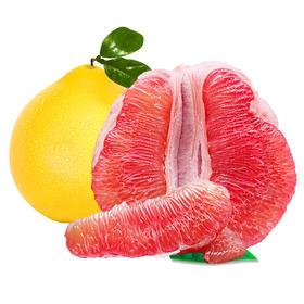 福建红心蜜柚5-9斤|果肉饱满 鲜嫩多汁 甜蜜诱人【应季蔬果】