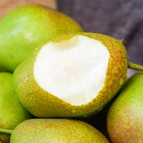 陕西红香酥梨 咬着脆  吃着甜 皮薄肉厚 清香四溢 5斤/9斤装