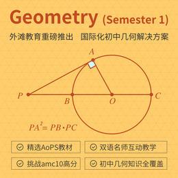 2020年寒假 初中双语数学 Geometry