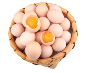 特价 鲜鸡蛋30枚/板 | 基础商品