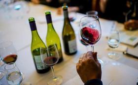 【上海】2020年8月25日葡萄酒入门认证课
