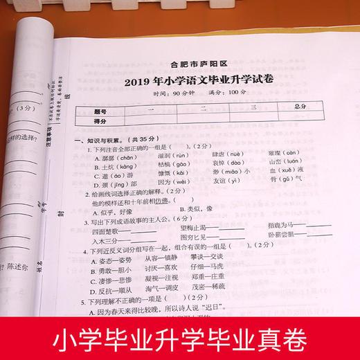 【开心图书】2020新版语数英名校冲刺小升初模拟试卷+小升初总复习全6册 商品图5