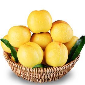 【山东】蒙阴应季黄金油桃黄桃 甜蜜多汁 个大饱满