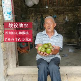 【战役助农】四川红心猕猴桃 清甜可口多汁(放软后吃)