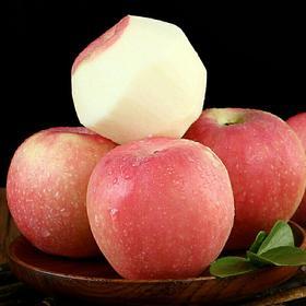 陕西嘎啦苹果脆甜多汁产地直发新鲜水果早熟红苹果10斤装