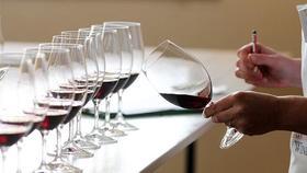【上海盲品课】这场穿梭之旅,学懂南北半球葡萄酒的经典差异
