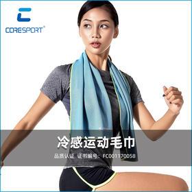 【新品上市 拍2发3】冷感毛巾 快速降温 瞬间散热 吸湿吸汗 防臭 速干瑜伽健身跑步降温冰巾