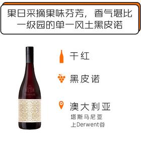 2017年澳洲雄狮酒庄陶罐狮心黑皮诺干红葡萄酒 Domaine Simha Lionheart Amphora Pinot Noir 2017