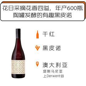 2017年澳洲雄狮酒庄陶罐明眸黑皮诺干红葡萄 Domaine Simha Beauregard Amphora Pinot Noir 2017