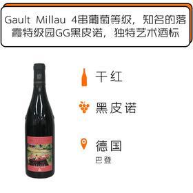 2015年哈福斯堡酒庄落霞特级园GG黑皮诺干红葡萄酒 Weingut Burg Ravensburg Lochle GG Hejia Edition 2015