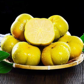 云南高山脆柿子种植新鲜当季水果硬大柿子脆甜应季孕妇果10斤装